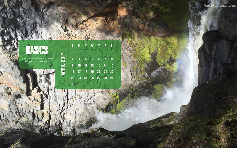 Download Our Monthly Wallpaper >